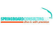 Springboard Consulting, LLC