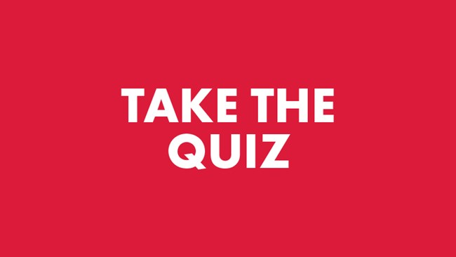 Quizzes | CEO Action for Diversity & Inclusion